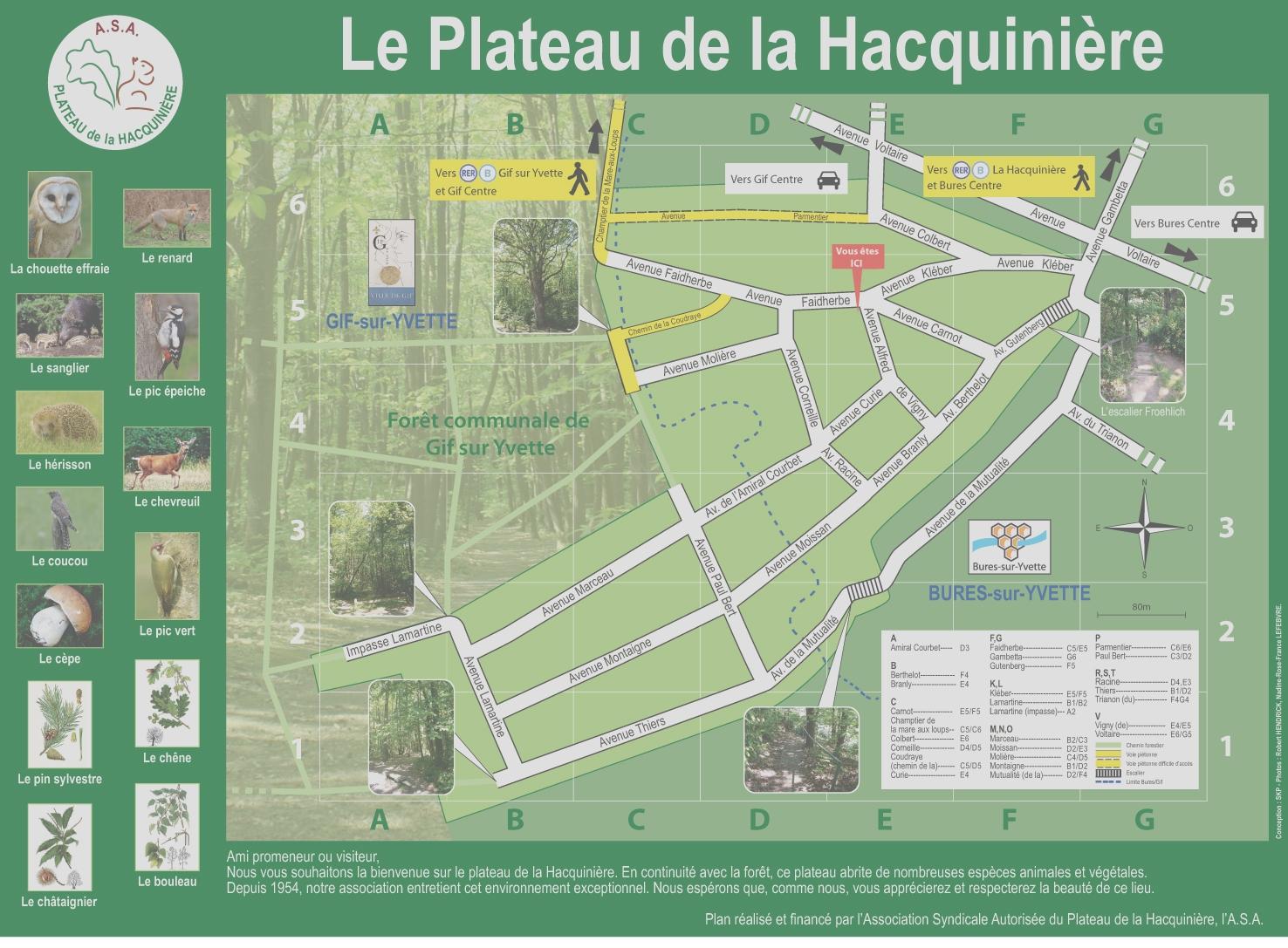 Plan du plateau